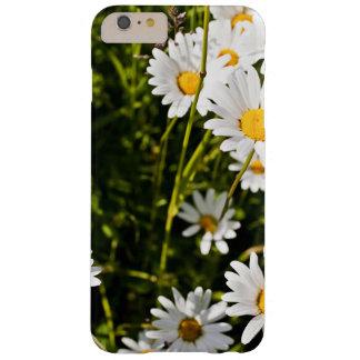 Leucanthemum Vulgare Barely There iPhone 6 Plus Case