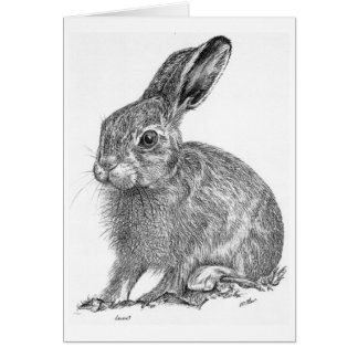 Leveret Greeting Card