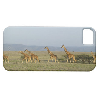 Lewa Wildlife Conservancy, Kenya Barely There iPhone 5 Case