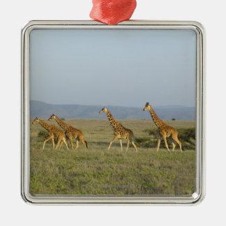 Lewa Wildlife Conservancy, Kenya Christmas Ornament