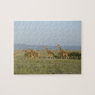 Lewa Wildlife Conservancy, Kenya Jigsaw Puzzle