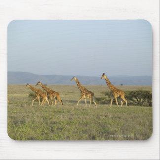 Lewa Wildlife Conservancy, Kenya Mouse Mat