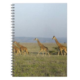 Lewa Wildlife Conservancy, Kenya Notebook