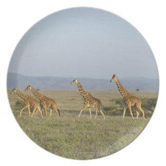 Lewa Wildlife Conservancy, Kenya Plate