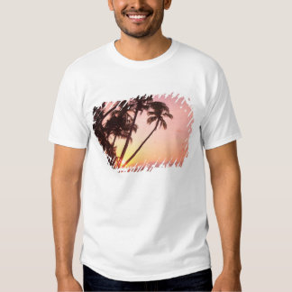 Lewolin Village, Illi Api Island, Selat Boleng Tee Shirt