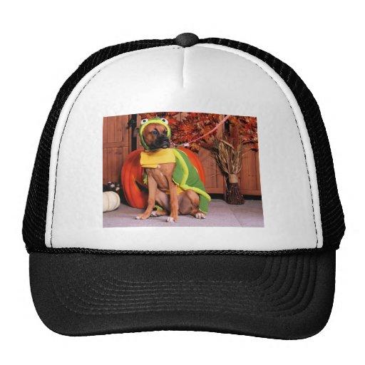 Lexie - Boxer - Photo-3 Trucker Hats