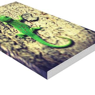 lézard de l'ile maurice canvas prints
