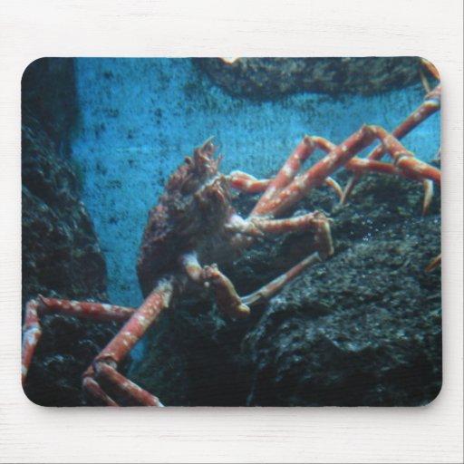 lg. saltwater crab mouse mat