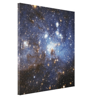 LH 95 stellar nursery space photography Canvas Prints