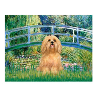 Lhasa Apso 9 - Bridge Postcard
