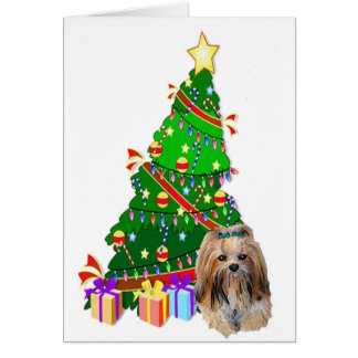 Lhasa Apso Christmas Card