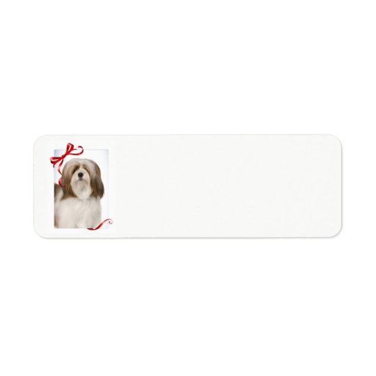 Lhasa Apso Christmas Return Address Labels