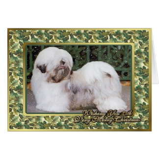 Lhasa Apso Dog Blank Christmas Card