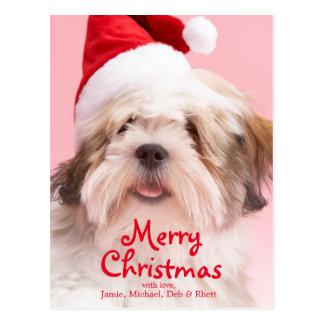 Lhasa Apso Dog Wearing Santa Hat Postcard