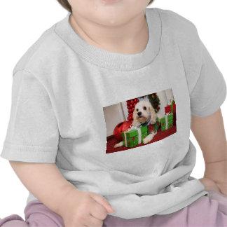 Libby - Cockapoo - Johnson Tshirts