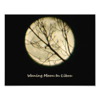 Libra Moon Through Tree Branches Photo Print