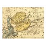 Libra, Scorpio Postcard