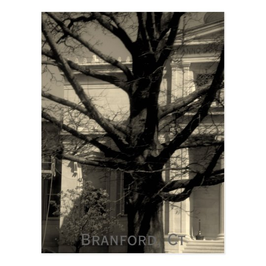 Library, Branford, Ct Postcard