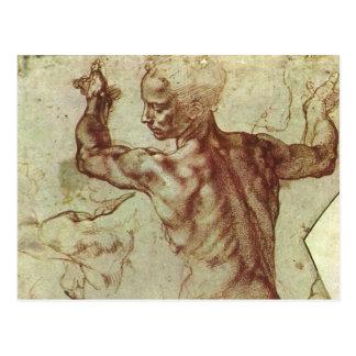 Libyan Sibyl Study by Michelangelo Postcard