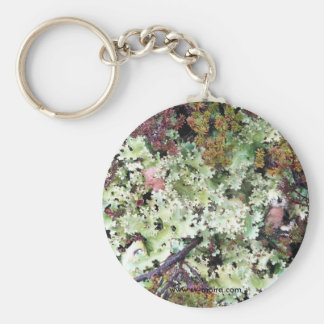 Lichen, Ainsworth Bay, Tierra del Fuego, Chile Basic Round Button Key Ring