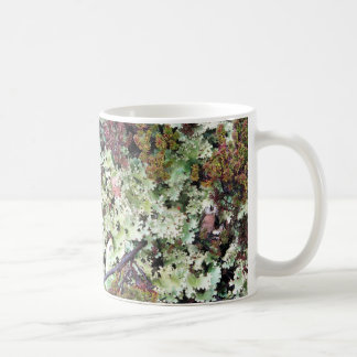 Lichen, Ainsworth Bay, Tierra del Fuego, Chile Basic White Mug