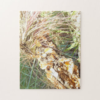 Lichen and Air Plant Jigsaw Puzzle