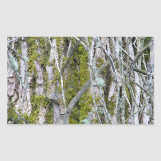 Lichen, Bark, and Branches Rectangular Sticker