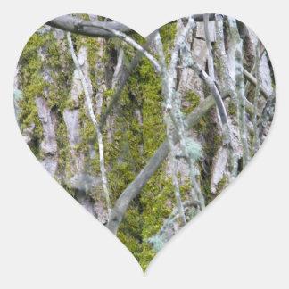 Lichen, Bark, and Branches Heart Sticker