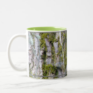 Lichen, Bark, and Branches Two-Tone Mug