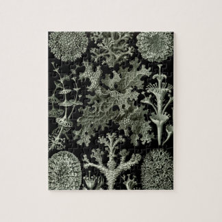 Lichen by Ernst Haeckel, Vintage Nature Plants Jigsaw Puzzle