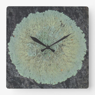 Lichen Mossy Circle Square Wall Clock