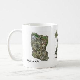 Lichens 2 coffee mug