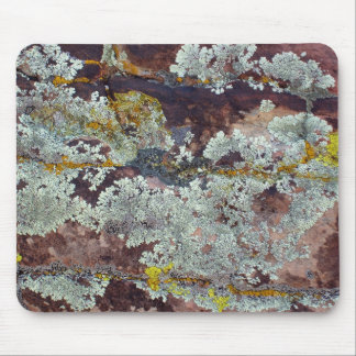 Lichens on Rock #4 Mouse Mat