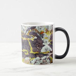 Lichens On Rock No. 3 Magic Mug
