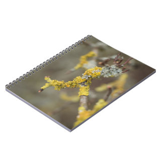 Lichens Spiral Notebook