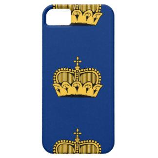 Lichtenstein iPhone 5 Case