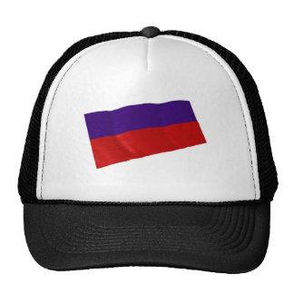 lichtenstein mesh hats