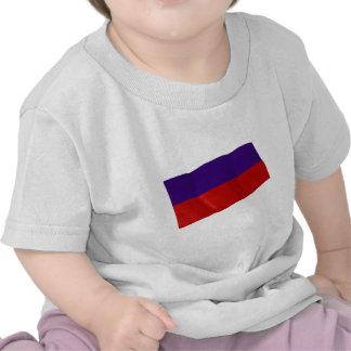 lichtenstein tshirts