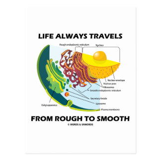 Life Always Travels From Rough To Smooth Postcard