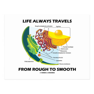 Life Always Travels From Rough To Smooth Post Card
