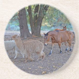 Life at the ranch drink coasters