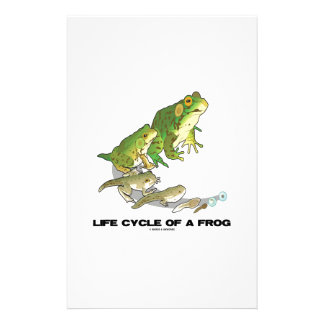 Life Cycle Of A Frog (From Egg To Tadpole To Frog) Stationery Design