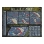 Life Cycle of a Storm Poster