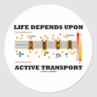 Life Depends Upon Active Transport Na-K Pump Stickers