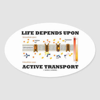 Life Depends Upon Active Transport Na-K Pump Oval Sticker
