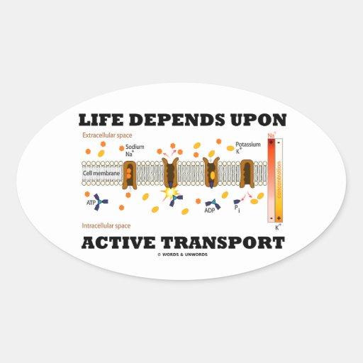 Life Depends Upon Active Transport (Na-K Pump) Oval Sticker