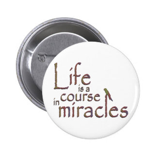 Life is a course in miracles pins