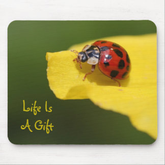 Life Is A Gift Ladybug Mouse Pad