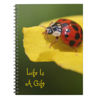 Life Is A Gift Ladybug Notebook