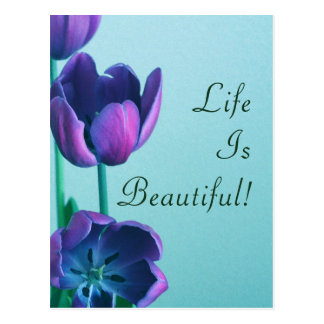 Life Is Beautiful Purple Tulips Postcard